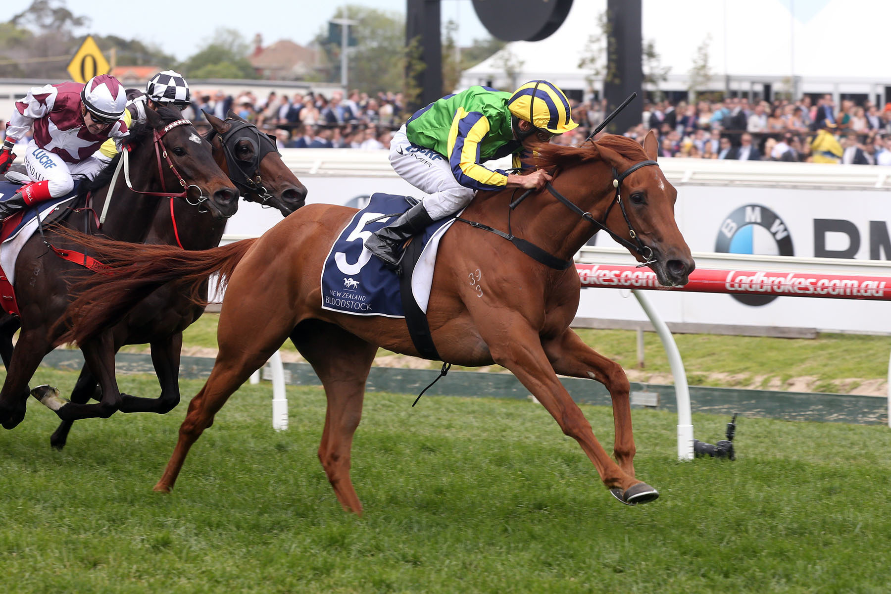 Eleonora 048 NZ Bstock Ethereal Stakes