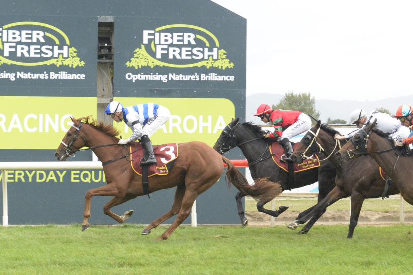 SIDE BY SIDE TE AROHA 10 4 2021 RACE IMAGES PHOTO